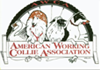 American Working Collie Association